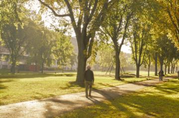 Mise à jour sur les mesures sanitaires à l'Université Laval